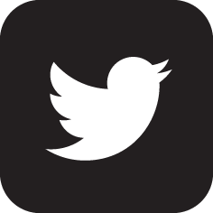 twitter-logoZWART