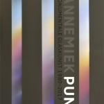 Annemiek Punt Monumentale Glaskunst 1980-2017 | Atelier Galerie Annemiek Punt Ootmarsum Glas & Schilder Kunst