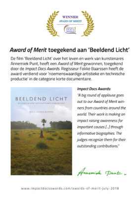 De film 'Beeldend Licht' wint Award of Merit | Atelier Galerie Annemiek Punt in Ootmarsum